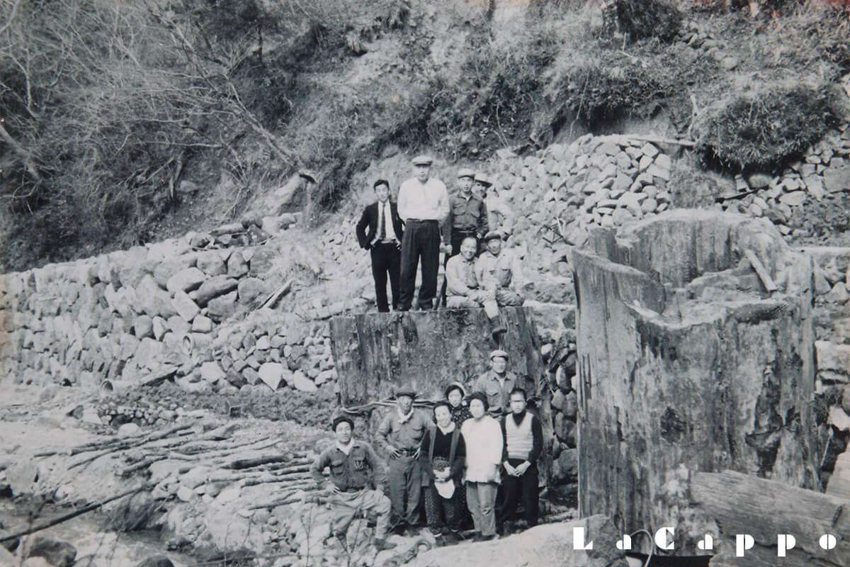 昭和23年、静岡県中伊豆天城茶神代出土写真