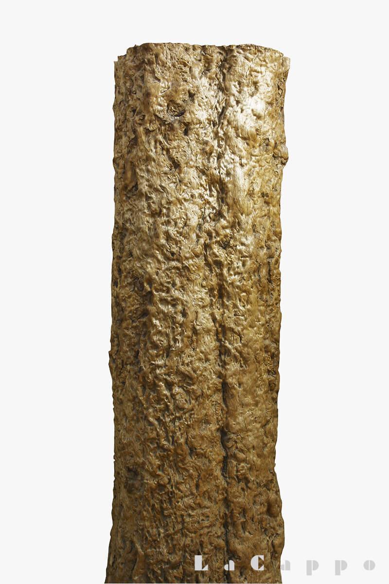 奈良県黒滝産のシロガシの巨木の4分の1の割材