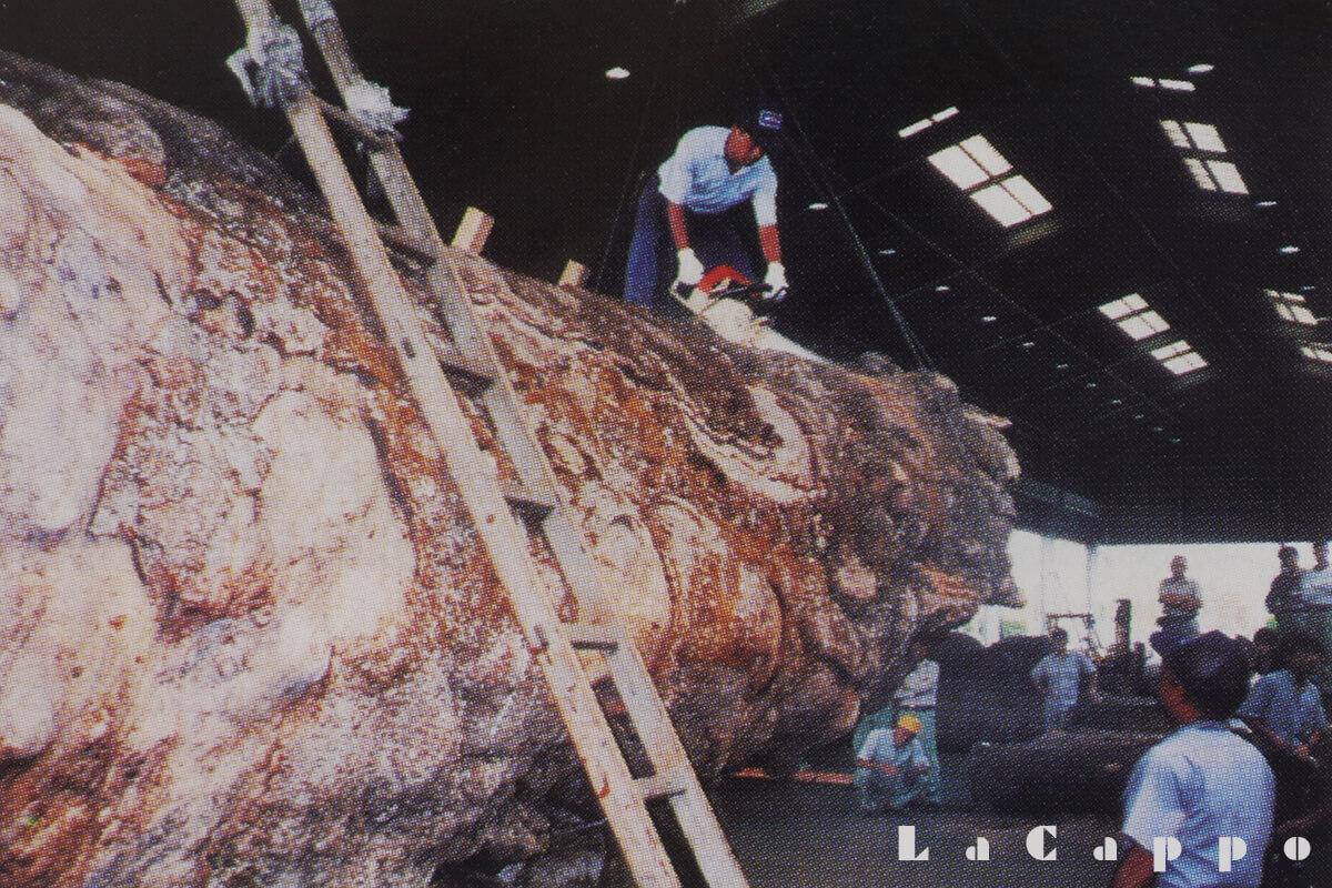 巨木ケヤキ材