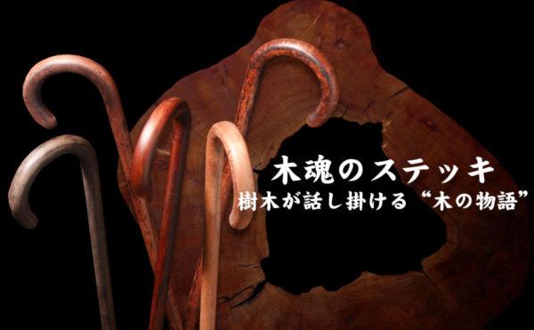 """千年太古の""""木""""の語り部"""