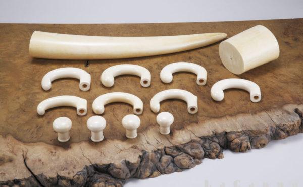 ラカッポが保有する貴重な本象牙材