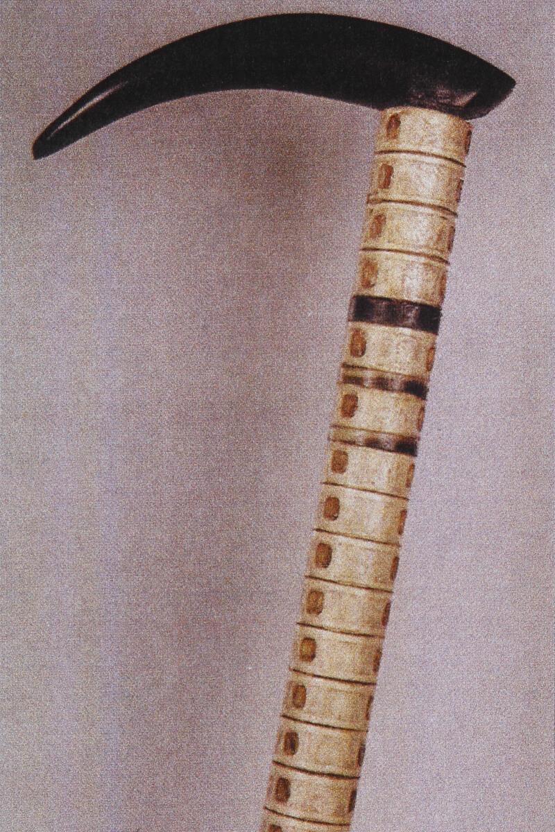 青鮫(あおざめ)の背骨から作られたステッキ